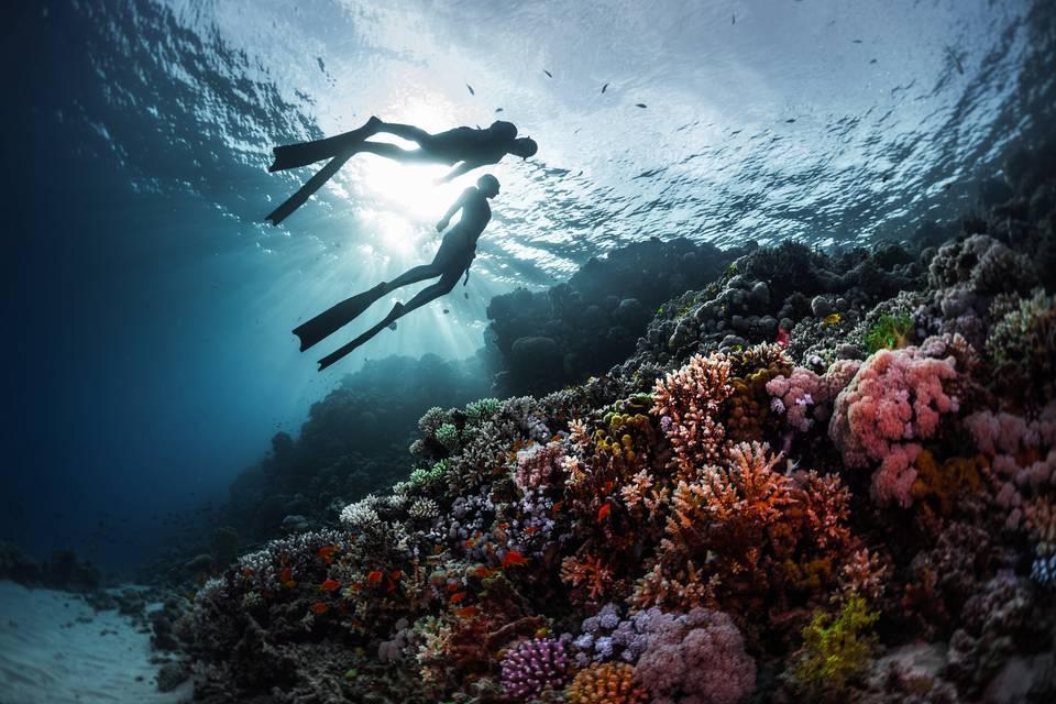 Lua de mel com mergulho: 5 destinos de