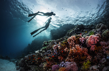 """Lua de mel com mergulho: 5 destinos de """"tirar o fôlego"""" no Brasil"""