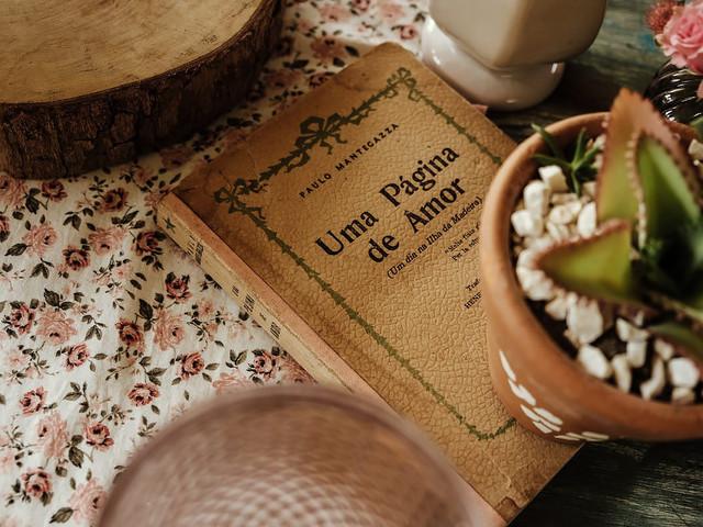 10 Sugestões de décor para os amantes dos livros em seu dia C