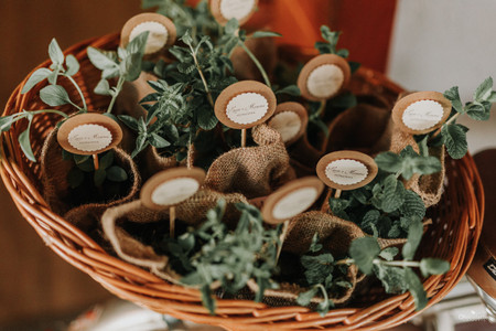 """Casamentos sustentáveis: 7 itens dessa tendência verde para vocês dizerem """"sim"""""""