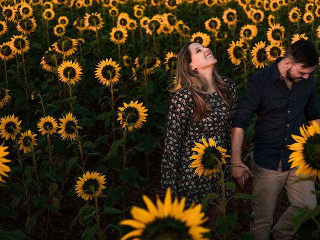 Girassóis no casamento: inspiração primaveril em 70 imagens