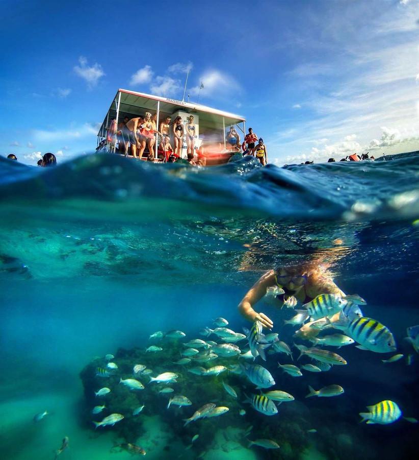 Check-in Viagens e Turismo
