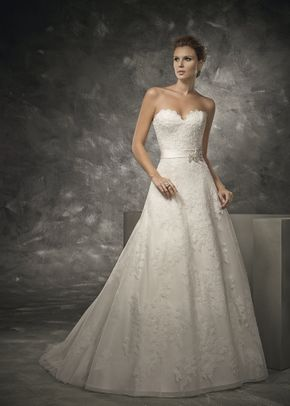 DV 16210, Divina Sposa