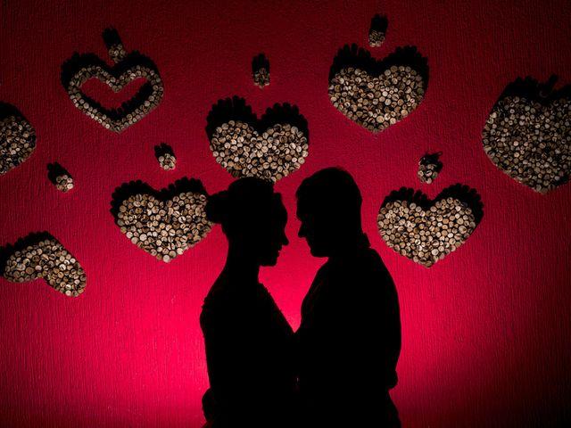 O casamento de Aline e Vinicius