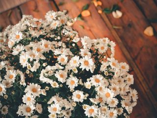 O casamento de Ester e Julio 1