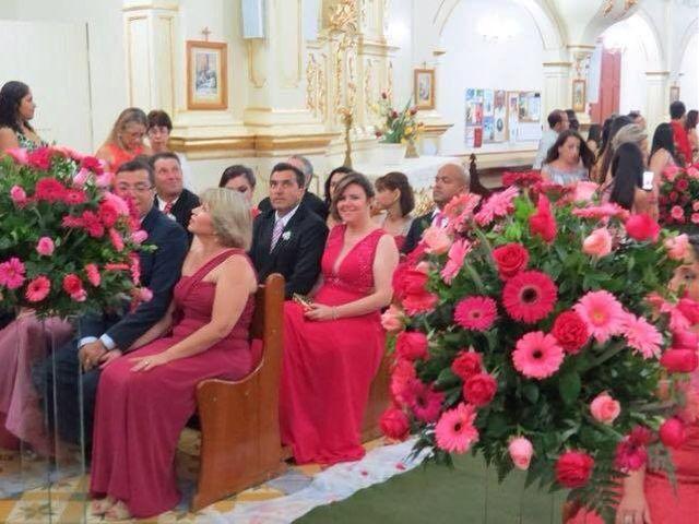 O casamento de Dalmir e Thais em Aracitaba, Minas Gerais 1