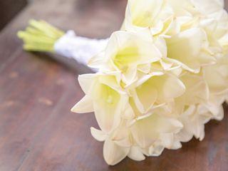 O casamento de Luiza e Andressa 2