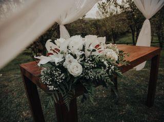 O casamento de Louise e Brian 1