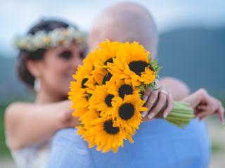 O casamento de Ana Paula e Diogo 2