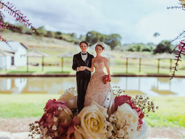 O casamento de Irom e Andressa em Anápolis, Goiás 67