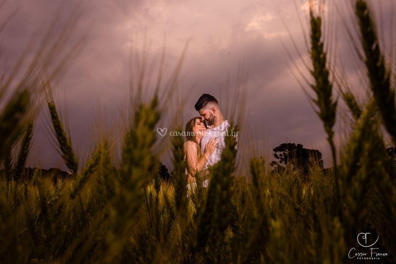 Noivos no trigo