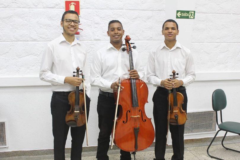 Trio de Cordas d'Amore
