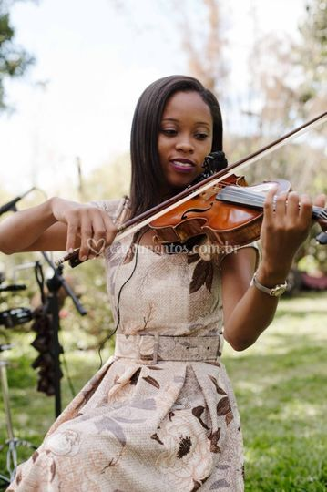 Violino • Louise