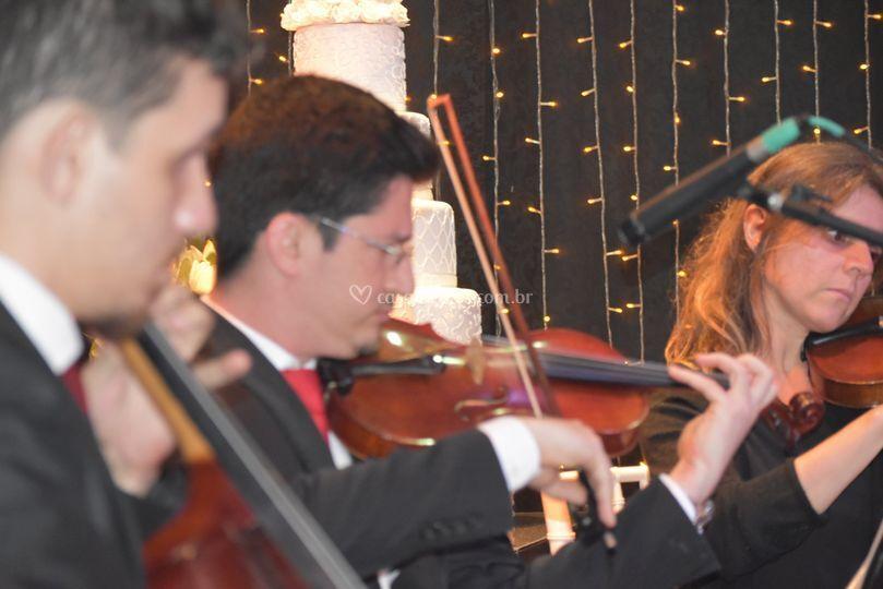 Equipe de cordas Harmonise