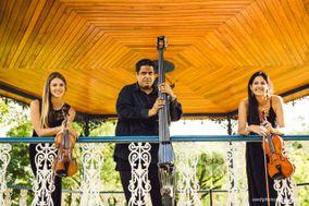 Trio Opus