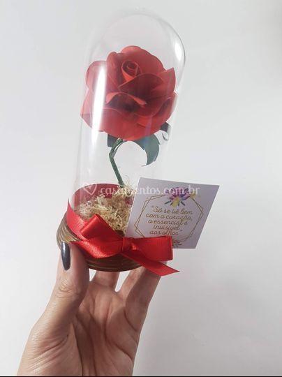 Rosa na Redoma