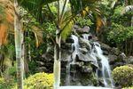 Jardim de Alpes Serrano