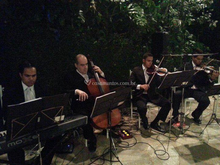 MF Eventos  Musicais