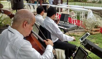 MF Eventos  Musicais 1