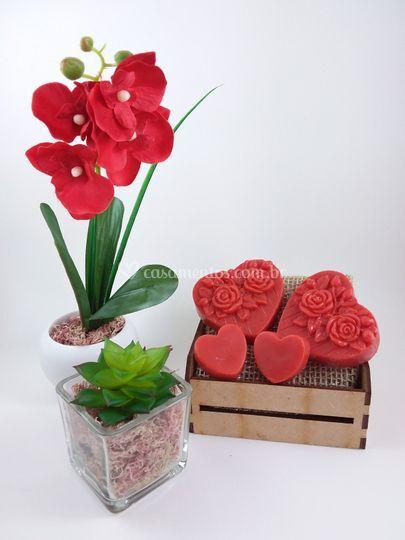 Kit Orquídea Provance