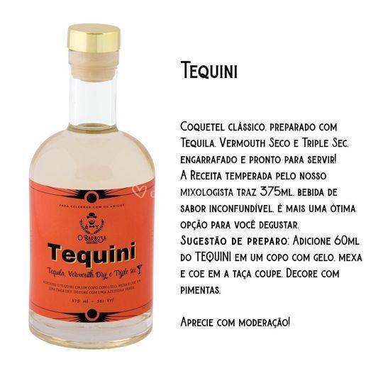 TEQUINI