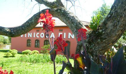 Vinícola Fin 1