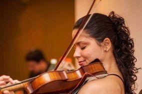 Aysllany Edifrance - Violinista