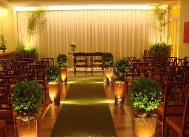 Verde plantas for Plantas decorativas
