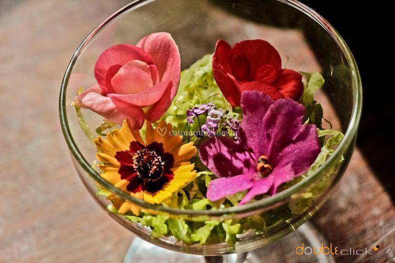 Salada de flores comestíveis