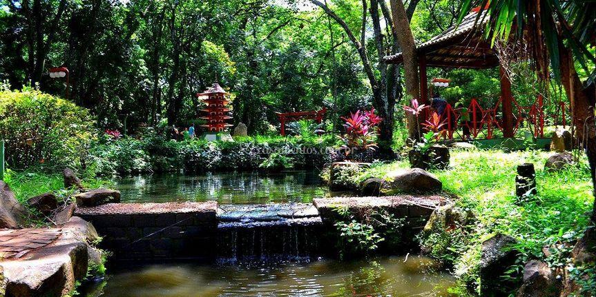 Jardim Japonês -local surpresa