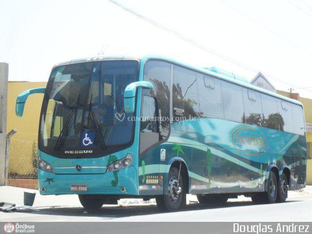 Ônibus 42, 44 e 48 Pax