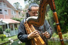 Harpa Nupcial