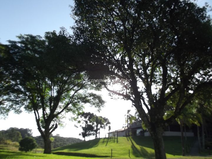 Jardins mandala