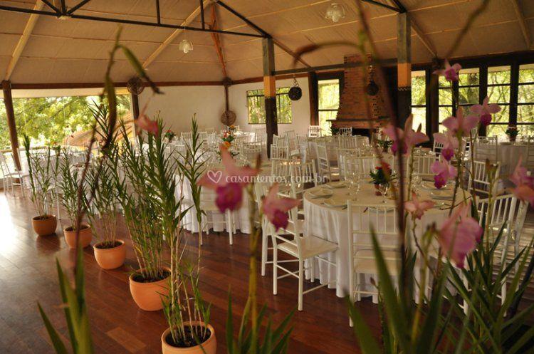 Decoração com orquídea bambu