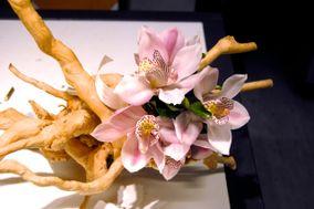 Paula de Bona Floral Art