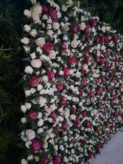 Rosas Creme e Rosas
