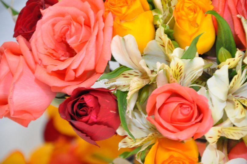 Flores impecáveis