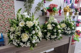 Floricultura Amaryllis