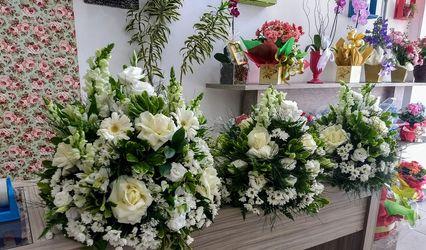 Floricultura Amaryllis 1