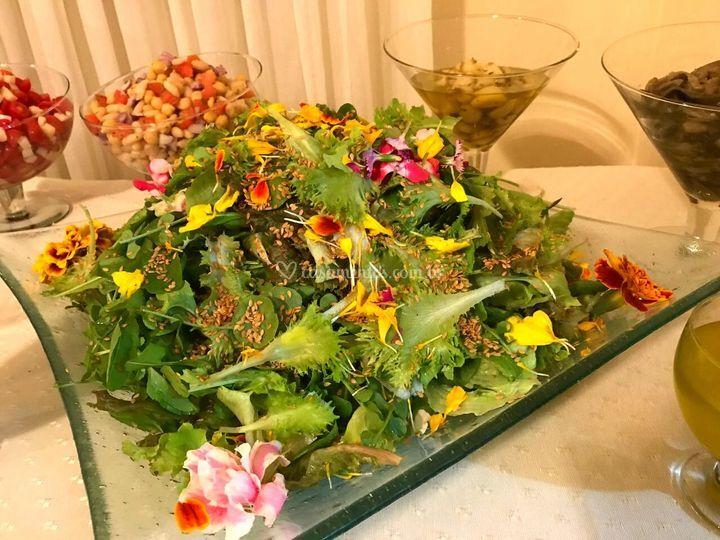 Salada Priimavera