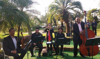 Quarteto de Cordas Canção