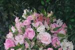 Arranjo médio com rosas