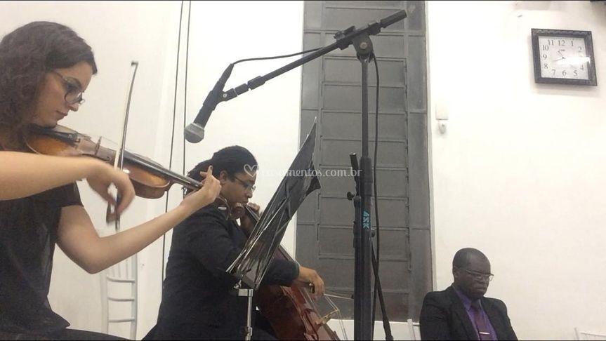 Violino, violoncelo e piano