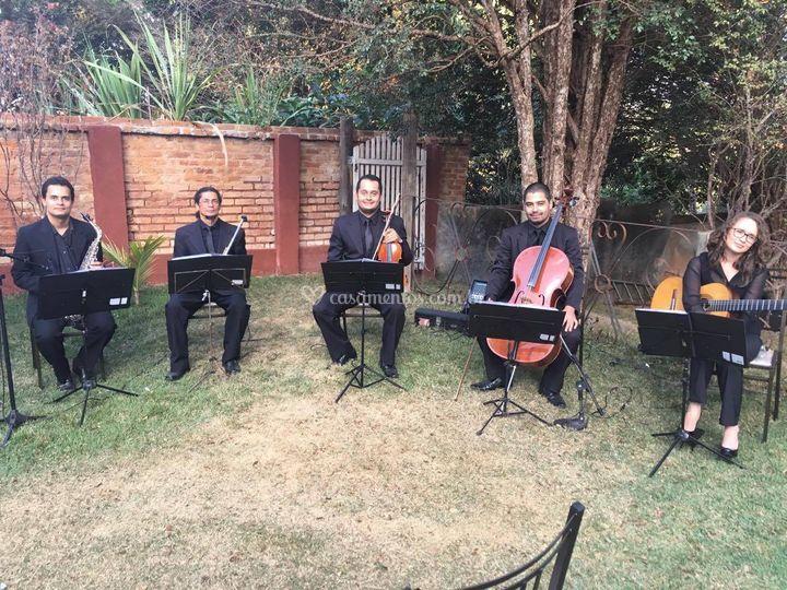 Grupo Musical Família Rodrigues