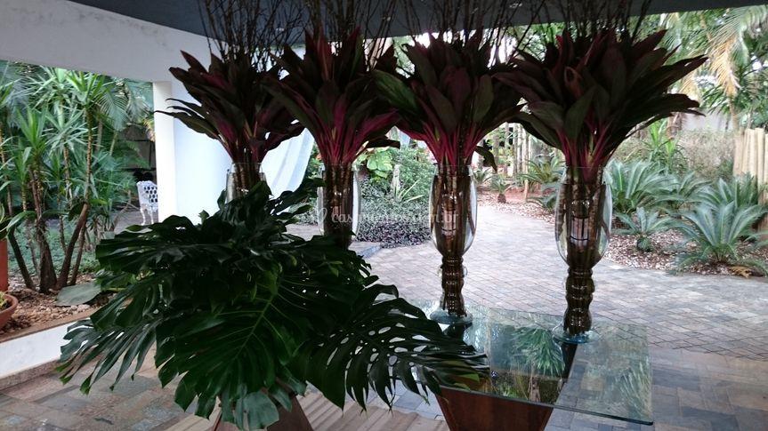 Decoração com plantas e folhas