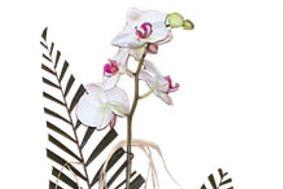A Flora Real Grandeza