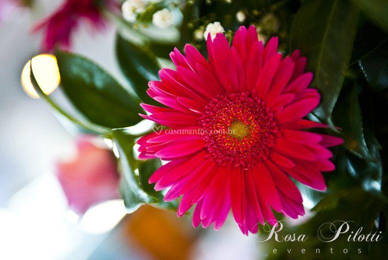 Arranjos florais de Rosa Pilotti Eventos