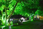 �rvores iluminadas de Espa�o Carrier
