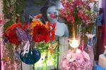 15 anos de borboletas de Ch�cara Pedrosa Eventos