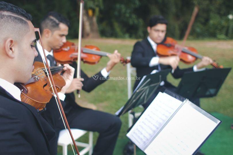 Trio, quarteto de cordas...